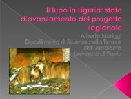Il lupo in Liguria: stato d'avanzamento del progetto regionale