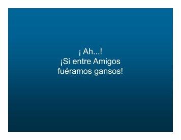 Vuelo de ganzos - Gabriel Zelaya