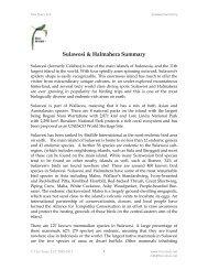 Sulawesi & Halmahera Summary - Tico Tours