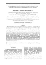 Morphological and Molecular Studies of Selected Termitomyces ...