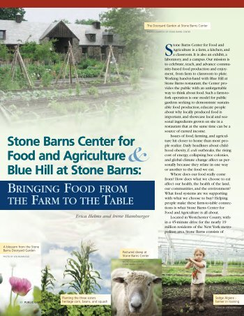 Stone Barns Center for Food and Agriculture Blue Hill at Stone ...