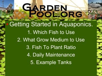 Finding the for Garden pool pdf