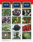 More Varieties More Varieties - Page 4