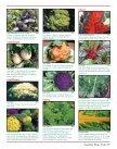 More Varieties More Varieties - Page 7