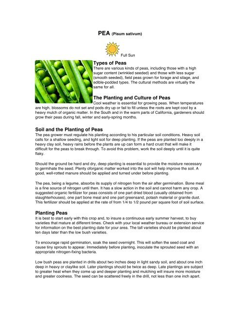 Types Of Peas The Planting And Culture Of Peas Soil And The