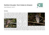 Northern Ecuador: from Andes to Amazon - Mindo Bird Tours