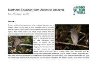 Northern Ecuador: from Andes to Amazon - Mindo Bird Tours
