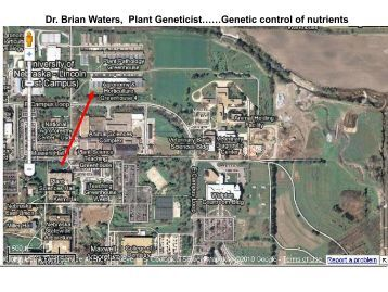 Dr. Brian Waters, Plant Geneticist……Genetic control of nutrients