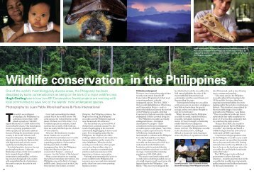 Wildlife conservation in the Philippines