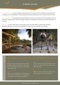 Safari for All Seasons - Wilderness Safaris - Page 3