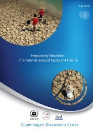Negotiating Adaptation: International issues of Equity and ... - UNEP