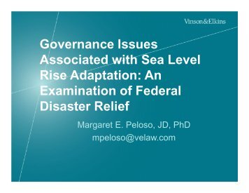 Governance Issues Associated with Sea Level Rise Adaptation: An ...