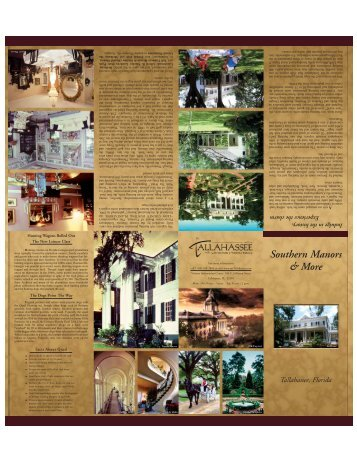 Southern Manors & More - ImarcsGroup.com