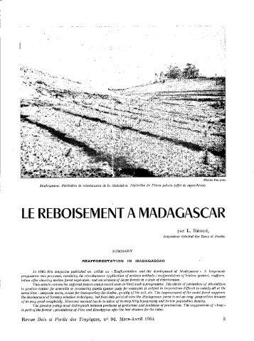 LE REBOISEMENT A MADAGASCAR - Bois et forêts des tropiques