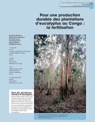Pour une production durable des plantations d'eucalyptus au Congo ...