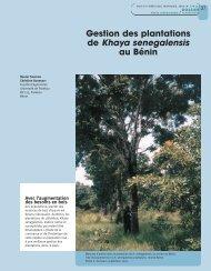 Gestion des plantations de Khaya senegalensis au Bénin