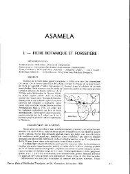 ASAMELA - Bois et forêts des tropiques