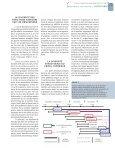 la biodiversité dans les sols forestiers - Bois et forêts des tropiques - Page 5