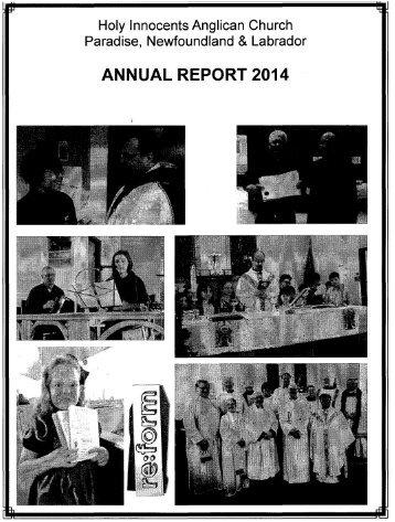agm_report_2014