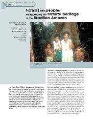 in the Brazilian Amazon - Bois et forêts des tropiques
