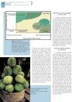 Les associations agroforestières et leurs multiples ... - ResearchGate - Page 6
