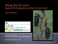 Along the Air Line… - Performance Vision