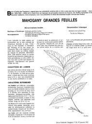 MAHOGANY GRANDES FEUILLES - Bois et forêts des tropiques