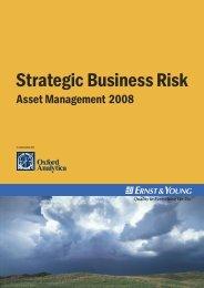 Strategic Business Risk Asset Management 2008