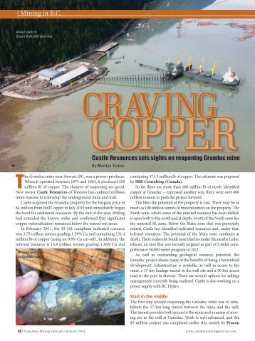 Craving Copper