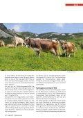 CHBraunvieh 07-2012 [7.88 MB] - Schweizer Braunviehzuchtverband - Seite 5