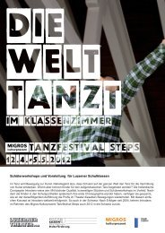 Flyer Luzern - Steps