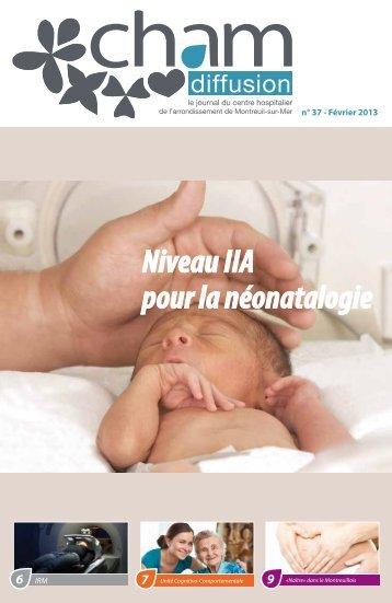 Niveau IIA pour la néonatalogie - Centre Hospitalier de l ...