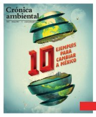 cronica-ambiental-08