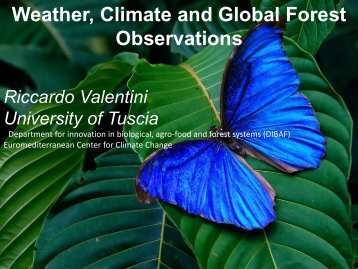 Weather, Climate & Global Forest Observation - Group on Earth ...