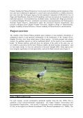 Pastoralists and wildlife conservation in western China ... - Page 5