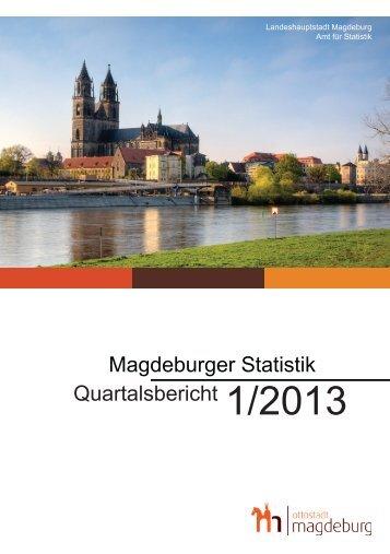 Statistischer Quartalsbericht 1/2013