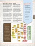 Reddish Egret (Egretta rufescens) Conservation Action Plan - Page 2