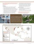Reddish Egret (Egretta rufescens) Conservation Action Plan - Page 4