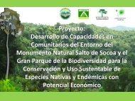 Desarrollo de Capacidades en Comunitarios del Entorno ... - CEDAF
