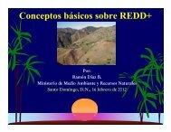 Que es REDD? - CEDAF