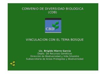 CONVENIO DE DIVERSIDAD BIOLOGICA (CDB ... - CEDAF