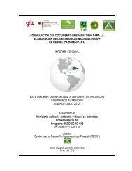 INFORME GENERAL de la Formulación del Documento ... - CEDAF