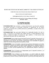 Primer Borrador Anteproyecto de Ley - CEDAF