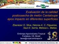 Evaluación de la calidad postcosecha de melón ... - CEDAF