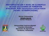 ANATOMÍA FOLIAR Y NIVEL DE CLOROFILA DE DOS ... - CEDAF