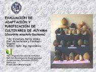 EVALUACIÓN DE ADAPTACIÓN Y PURIFICACIÓN DE ... - CEDAF