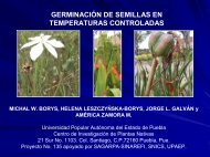 germinación de semillas en temperaturas controladas - CEDAF