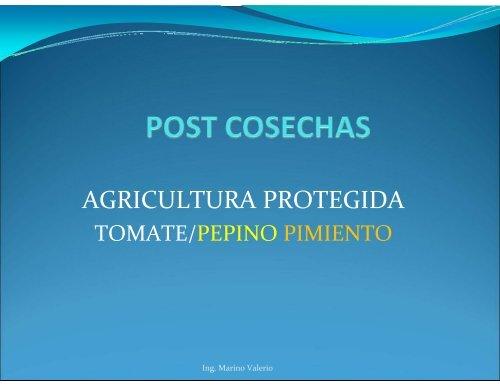 Ing. Marino Valerio - CEDAF
