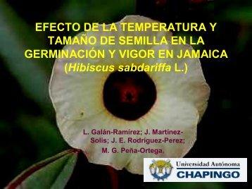 EFECTO DE LA TEMPERATURA Y TAMAÑO DE SEMILLA ... - CEDAF