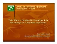 Taller Hacia la Planificaci Taller Hacia la Planificació ón ... - CEDAF